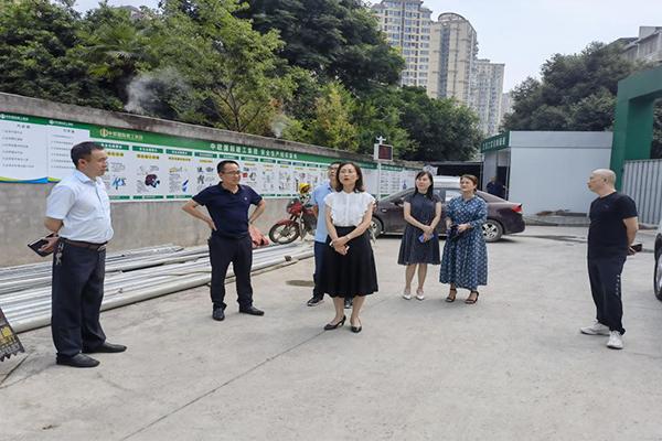 区人大副主任岳志红带队调研中心城区幼儿园建